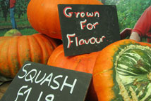 Find fruit and veg in Surrey