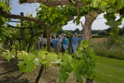 Biddenden tours / Local Food Kent