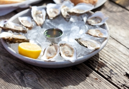 Oysters at Whitstable Oyster Festival | Local Food Kent