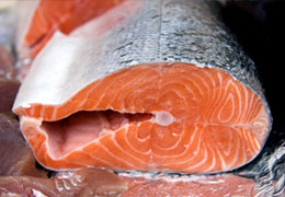 Salmon Steaks from Kent Fishmongers