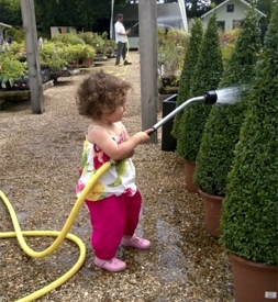 Ripley Farm Shop child watering | Local Food Surrey