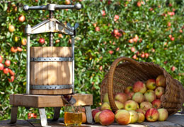 Local Surrey Ciders with Apples
