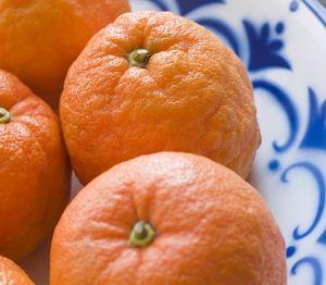 Seville orange posset
