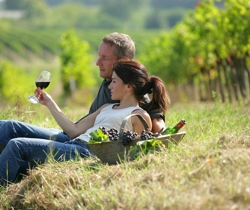 Couple in Hampshire vineyard enjoying Hampshire wine | Local Food Hampshire