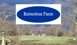 Butterbox Farm, Haywards Heath in
