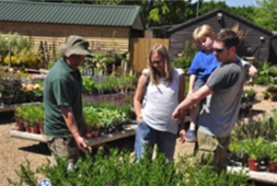 The family at Ripley Nurseries | Local Food Surrey