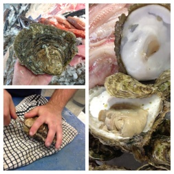 Fresh Oysters from Sussex